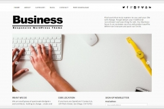 Wordpress firmacan internet hizmetleri5