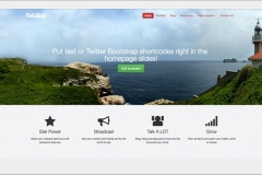 Wordpress firmacan internet hizmetleri6